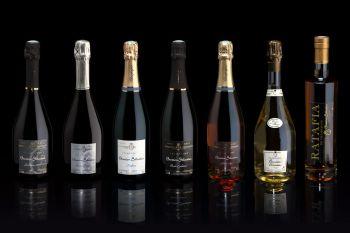 Photo illustrant le domaine viticole de CHAMPAGNE BRESSION SEBASTIEN